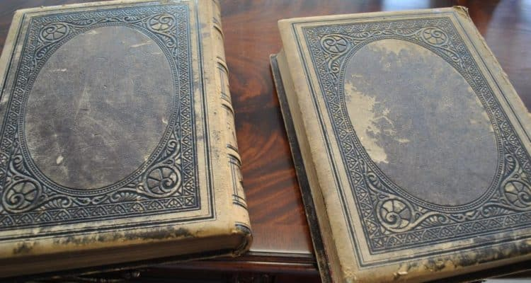 Antique Picturesque America 2 Volume Illustrated Book Set Edited William Cullen Bryant, 1872
